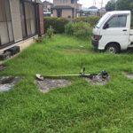 【絆レポート】深谷市 草刈り・芝刈り作業の詳細へ