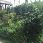【絆レポート】熊谷市 リピーターのお客様 庭木の手入れ作業の詳細へ