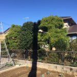 【絆レポート】熊谷市 ご新規のお客様 庭木の剪定作業の詳細へ